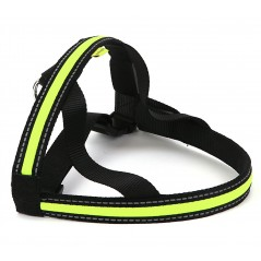 30790 Soft Nylon Green LED Harness 25mm by 60cm Small